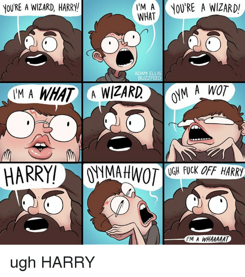 Youre A Wizard