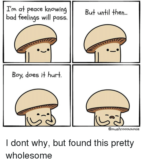 at-peace: I'm at peace knowing  bad feelings will pass.  But until then..  Boy, does it hurt  @mushroommovie I dont why, but found this pretty wholesome