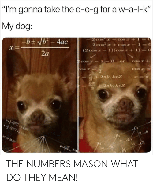 """Mean, Dog, and Mason: """"I'm gonna take the d-o-g for a w-a-l-k  My dog:  2 co  2 coN  (2 cos-1)(cos.  -bt Nb - 4ac  x  2a  2N. keZ  2xk keZ THE NUMBERS MASON WHAT DO THEY MEAN!"""
