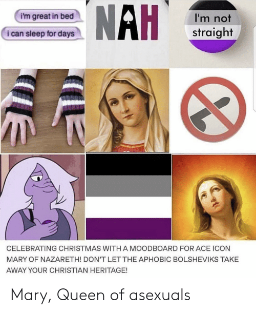 Christmas, Queen, and Sleep: i'm great in bed  I'm not  straight  i can sleep for days  CELEBRATING CHRISTMAS WITH A MOODBOARD FOR ACE ICON  MARY OF NAZARETH! DON'T LET THE APHOBIC BOLSHEVIKS TAKE  AWAY YOUR CHRISTIAN HERITAGE! Mary, Queen of asexuals