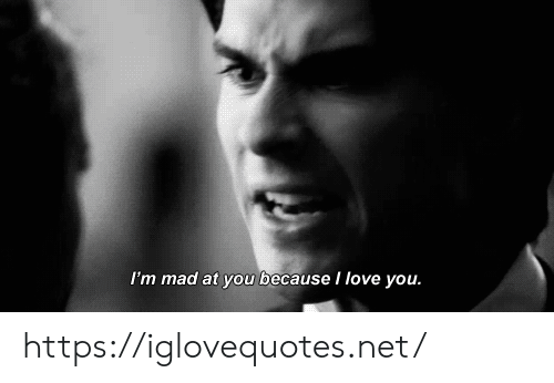Love, I Love You, and Mad: I'm mad at you because I love you. https://iglovequotes.net/