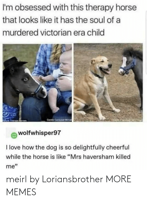 "Looks Like: I'm obsessed with this therapy horse  that looks like it has the soul of a  murdered victorian era child  Gende Carousal Minia  wolfwhisper97  I love how the dog is so delightfully cheerful  while the horse is like ""Mrs haversham killed  me"" meirl by Loriansbrother MORE MEMES"