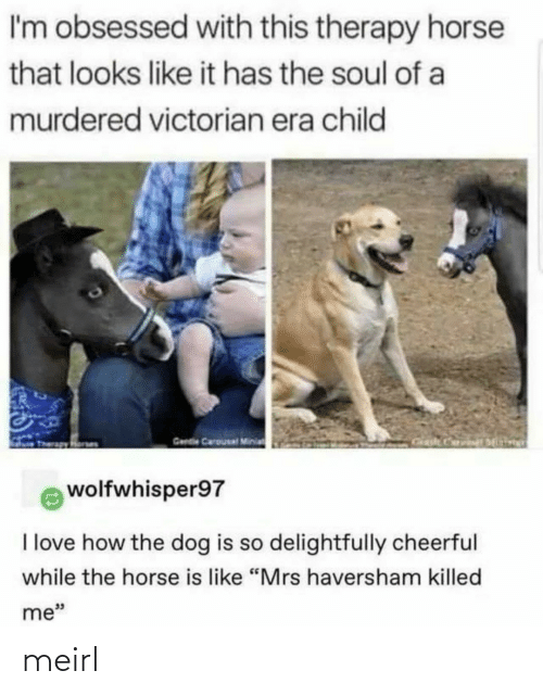 "Looks Like: I'm obsessed with this therapy horse  that looks like it has the soul of a  murdered victorian era child  Gende Carousal Minia  wolfwhisper97  I love how the dog is so delightfully cheerful  while the horse is like ""Mrs haversham killed  me"" meirl"