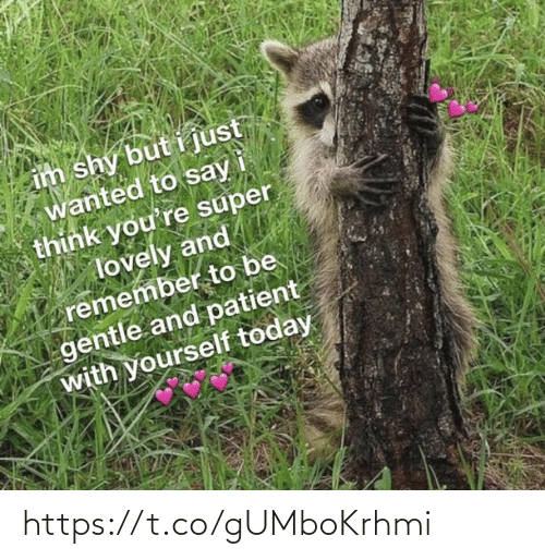 Patient: im shy but i just  wanted to say  think you're super  lovely and  remember to be  gentle and patient  with yourself today https://t.co/gUMboKrhmi