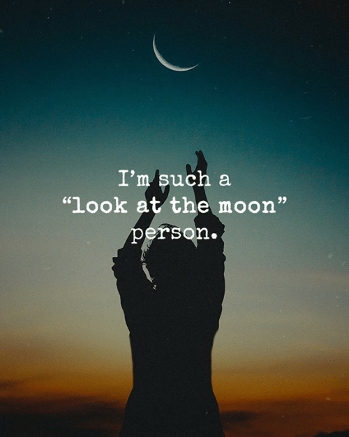 "Memes, Moon, and 🤖: I'm such a  ""look at the moon""  person."