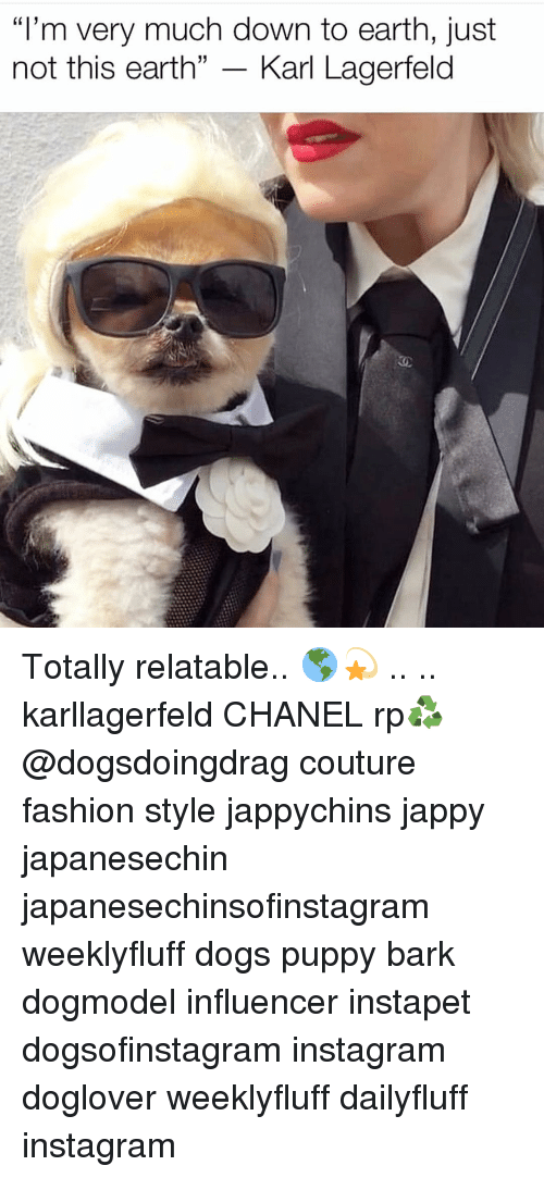"Dogs, Fashion, and Instagram: ""I'm very much down to earth, just  not this earth"" - Karl Lagerfeld Totally relatable.. 🌎💫 .. .. karllagerfeld CHANEL rp♻️ @dogsdoingdrag couture fashion style jappychins jappy japanesechin japanesechinsofinstagram weeklyfluff dogs puppy bark dogmodel influencer instapet dogsofinstagram instagram doglover weeklyfluff dailyfluff instagram"
