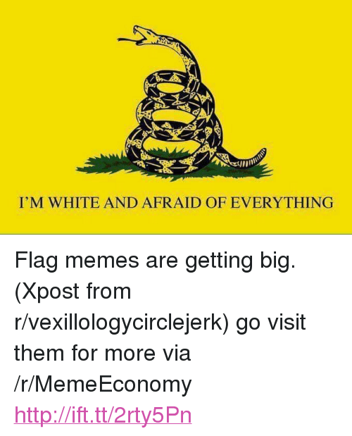 "Flag Memes: I'M WHITE AND AFRAID OF EVERYTHING <p>Flag memes are getting big. (Xpost from r/vexillologycirclejerk) go visit them for more via /r/MemeEconomy <a href=""http://ift.tt/2rty5Pn"">http://ift.tt/2rty5Pn</a></p>"
