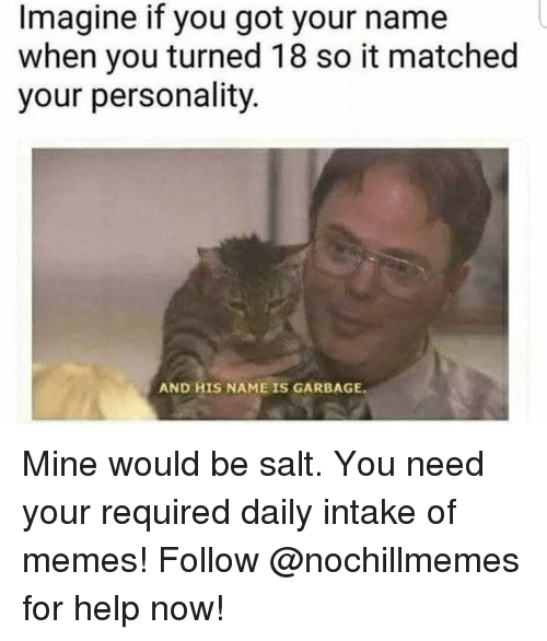 Memes, Help, and Got: Imagine if you got your name  when you turned 18 so it matched  your personality.  AND HIS NAME IS GARBAGE Mine would be salt. You need your required daily intake of memes! Follow @nochillmemes for help now!