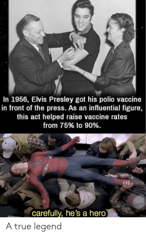 elvis: In 1956, Elvis Presley got his polio vaccine  in front of the press. As an influential figure,  this act helped raise vaccine rates  from 75% to 90%.  carefully, he's a hero A true legend