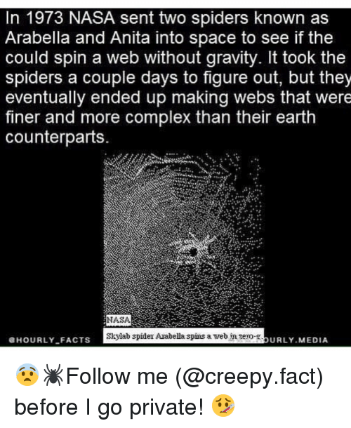 Complex, Creepy, and Memes: In 1973 NASA sent two spiders known as  Arabella and Anita into space to see if the  could spin a web without gravity. It took the  spiders a couple days to figure out, but they  eventually ended up making webs that were  finer and more complex than their earth  counterparts.  NASA  Skylab spider Arabella spins a web nzero-.  HOURLYFACTS  URLY MEDIA  - 😨🕷Follow me (@creepy.fact) before I go private! 🤒