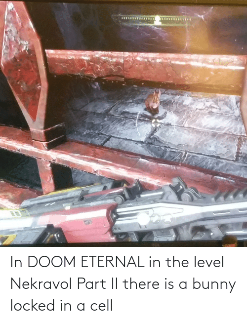 doom: In DOOM ETERNAL in the level Nekravol Part II there is a bunny locked in a cell