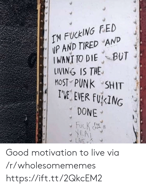 Wholesomememes: IN FUCKING FED  UP AND TIRED AND  IWANT TO DIE BUT  LINING IS THE  MOST PUNK SHIT  I'VE EVER FUKING  DONE  FucK  YEA  LiVE  FroR  CAVA (8  K Good motivation to live via /r/wholesomememes https://ift.tt/2QkcEM2