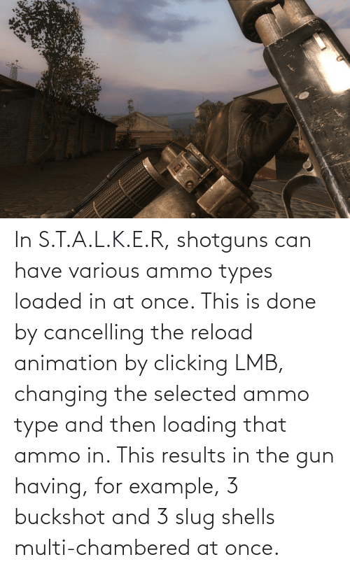 Selected: In S.T.A.L.K.E.R, shotguns can have various ammo types loaded in at once. This is done by cancelling the reload animation by clicking LMB, changing the selected ammo type and then loading that ammo in. This results in the gun having, for example, 3 buckshot and 3 slug shells multi-chambered at once.