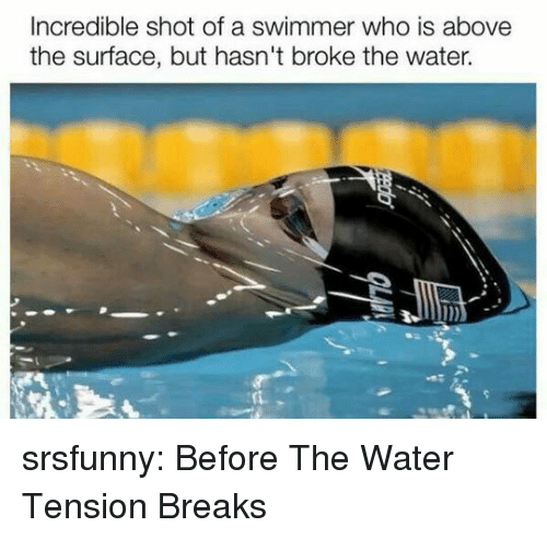 Tumblr, Blog, and Http: Incredible shot of a swimmer who is above  the surface, but hasn't broke the water. srsfunny:  Before The Water Tension Breaks