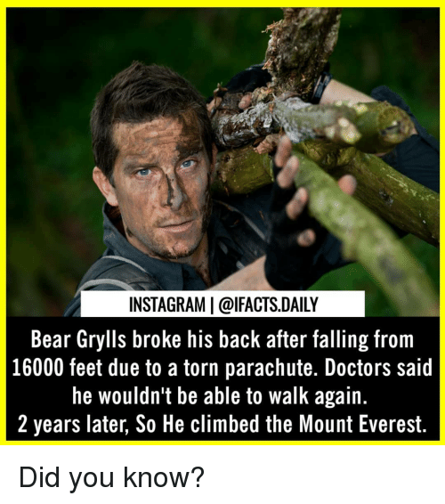 Instagram, Memes, and Bear: INSTAGRAM   @lFACTS.DAILY  Bear Grylls broke his back after falling from  16000 feet due to a torn parachute. Doctors said  he wouldn't be able to walk again.  2 years later, So He climbed the Mount Everest. Did you know?