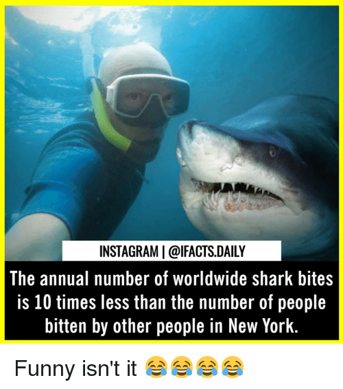 Funny, Instagram, and Memes: INSTAGRAM | @lFACTS.DAILY  The annual number of worldwide shark bites  is 10 times less than the number of people  bitten by other people in New York Funny isn't it 😂😂😂😂