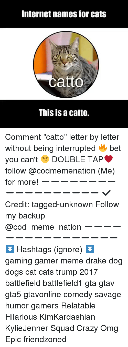 """Gamer Meme: Internet names for cats  catto  This is a catto. Comment """"catto"""" letter by letter without being interrupted 🔥 bet you can't 😏 DOUBLE TAP❤ follow @codmemenation (Me) for more! ➖➖➖➖➖➖➖➖➖➖➖➖➖➖➖➖➖➖ ✔ Credit: tagged-unknown Follow my backup @cod_meme_nation ➖➖➖➖➖➖➖➖➖➖➖➖➖➖➖➖ ⏬ Hashtags (ignore) ⏬ gaming gamer meme drake dog dogs cat cats trump 2017 battlefield battlefield1 gta gtav gta5 gtavonline comedy savage humor gamers Relatable Hilarious KimKardashian KylieJenner Squad Crazy Omg Epic friendzoned"""