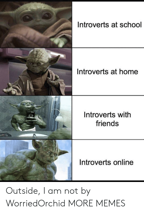 Am Not: Introverts at school  Introverts at home  Introverts with  friends  Introverts online Outside, I am not by WorriedOrchid MORE MEMES