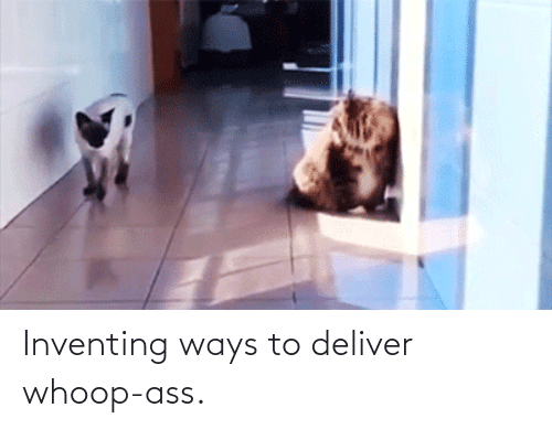 deliver: Inventing ways to deliver whoop-ass.