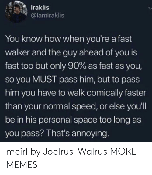 Dank, Memes, and Target: Iraklis  @lamiraklis  You know how when you're a fast  walker and the guy ahead of you is  fast too but only 90% as fast as you,  so you MUST pass him, but to pass  him you have to walk comically faster  than your normal speed, or else you'll  be in his personal space too long as  you pass? That's annoying. meirl by Joelrus_Walrus MORE MEMES