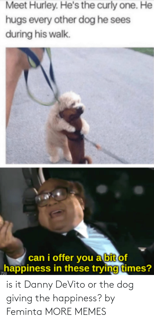 Danny Devito: is it Danny DeVito or the dog giving the happiness? by Feminta MORE MEMES