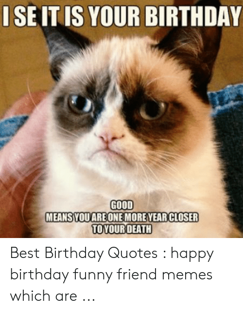 Birthday, Funny, and Memes: ISEIT IS YOUR BIRTHDAY  GOOD  MEANSYOUARE ONE MOREYEAR CLOSER  TOYOURDEATH Best Birthday Quotes : happy birthday funny friend memes which are ...