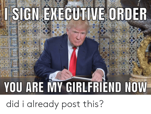 Girlfriend, Executive Order, and Did: ISIGN EXECUTIVE ORDER  PLVS  PLVS  VITRA  YOU ARE MY GIRLFRIEND NOW did i already post this?