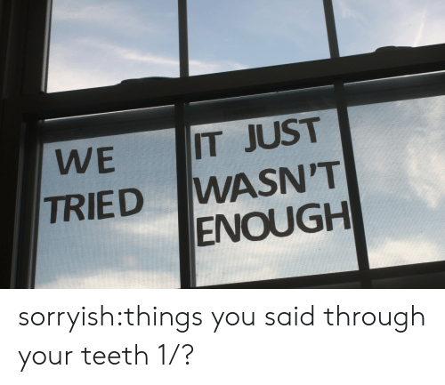 Target, Tumblr, and Blog: IT JUST  WASN'T  ENOUGH  WE  TRIED sorryish:things you said through your teeth 1/?