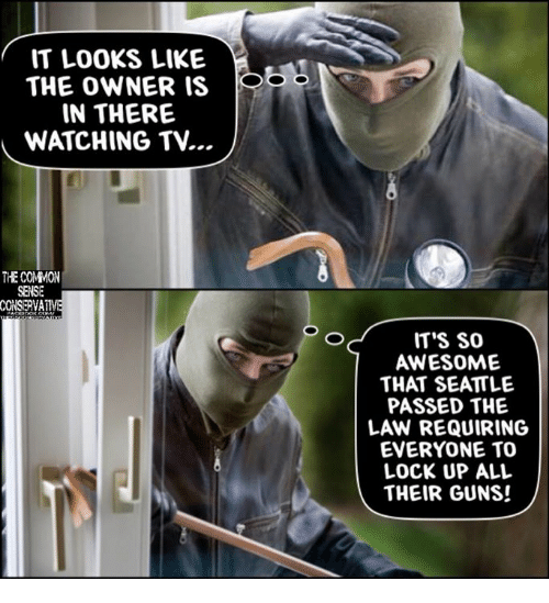 Guns, Memes, and Common: IT LOOKS LIKE  THE OWNER IS  IN THERE  WATCHING TV...  THE COMMON  SENSE  CONSERVA  ITS SO  AWESOME  THAT SEATTLE  PASSED THE  LAW REQUIRING  EVERYONE TO  LOCK UP ALL  THEIR GUNS!