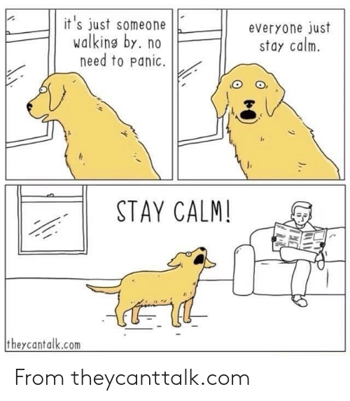 Com, Stay, and Calm: it 's just someoneeveryone just  walking by. no  need to Panic.  stay calm.  STAY CALM  theycantalk.com From theycanttalk.com