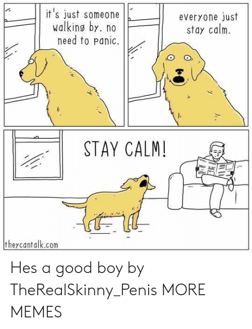Dank, Memes, and Target: it 's just someoneeveryone just  walking by. no  need to panic.  stay calm.  11  STAY CALM!  theycantalk.com Hes a good boy by TheRealSkinny_Penis MORE MEMES
