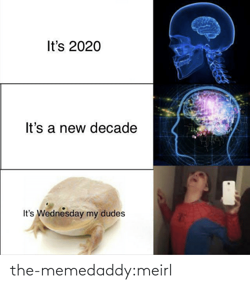 Target, Tumblr, and Blog: It's 2020  It's a new decade  It's Wednesday my dudes the-memedaddy:meirl