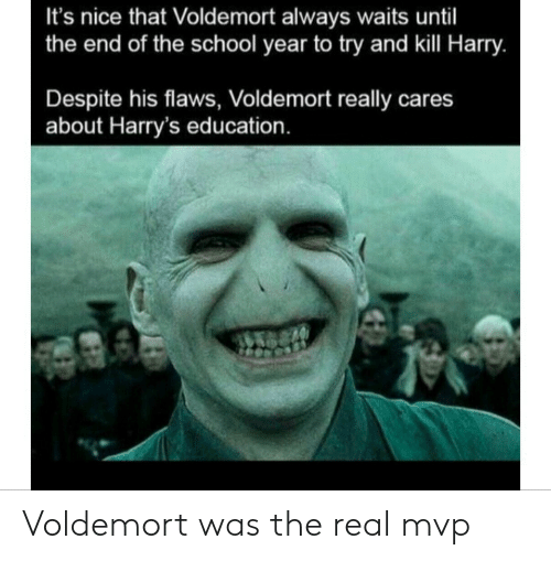 School, The Real, and Nice: It's nice that Voldemort always waits until  the end of the school year to try and kill Harry.  Despite his flaws, Voldemort really cares  about Harry's education. Voldemort was the real mvp