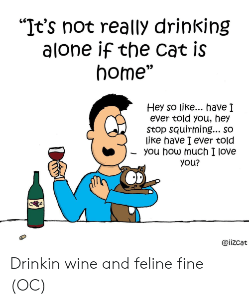 "I Love You: ""It's not really drinking  alone if the cat is  home""  Hey so like... have I  ever told you, hey  Stop squirming... so  like have I ever told  you how much I love  you?  C w  @iizcat Drinkin wine and feline fine (OC)"