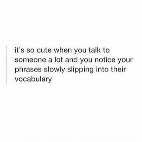 vocabulary: it's so cute when you talk to  someone a lot and you notice your  phrases slowly slipping into their  vocabulary