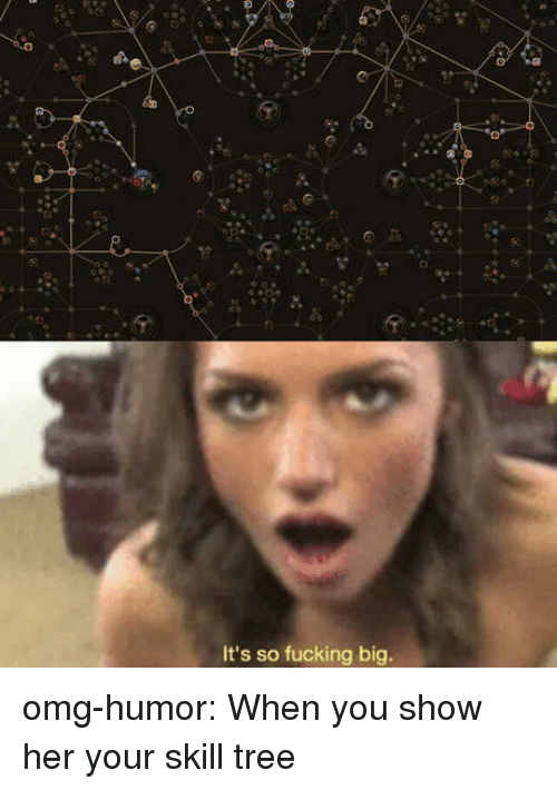 Fucking, Omg, and Tumblr: It's so fucking big. omg-humor:  When you show her your skill tree