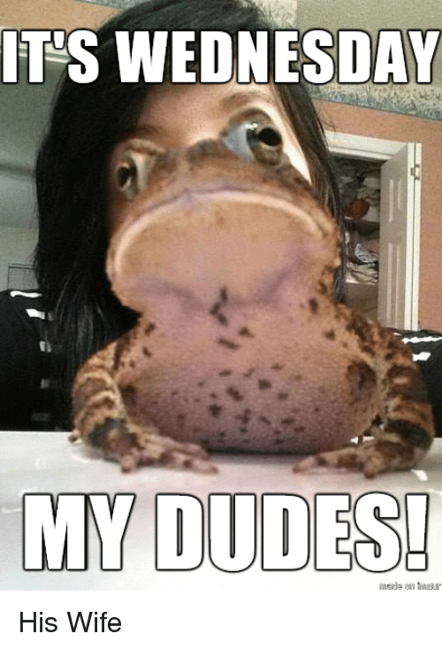 Its Wednesday My Dudes: IT'S WEDNESDAY  MY DUDES <p>His Wife</p>