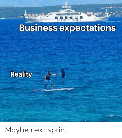 Business, Sprint, and Reality: JADROLINIJA  Business expectations  Reality Maybe next sprint