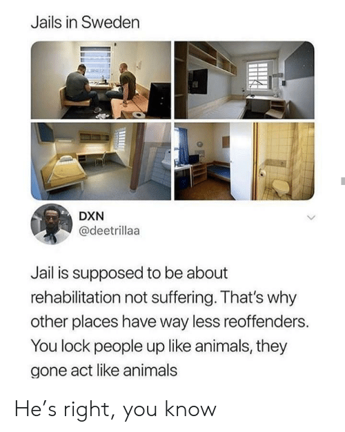 lock: Jails in Sweden  DXN  @deetrillaa  Jail is supposed to be about  rehabilitation not suffering. That's why  other places have way less reoffenders.  You lock people up like animals, they  gone act like animals He's right, you know