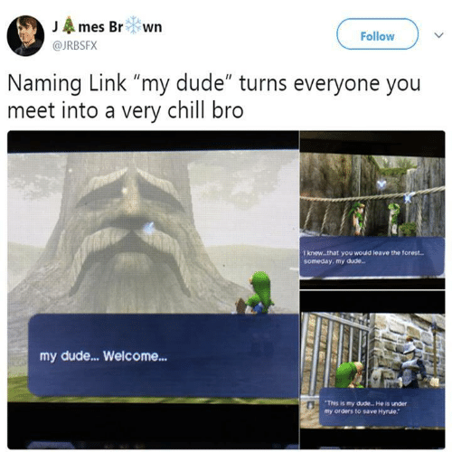 """Chill, Dude, and Link: JAmes Br wn  Follow  @JRBSFX  Naming Link """"my dude"""" turns everyone you  meet into a very chill bro  T knew..that you would teave the forest..  someday, my dude..  my dude...Welcome...  This is my dude. He is under  my orders to save Hyrule."""