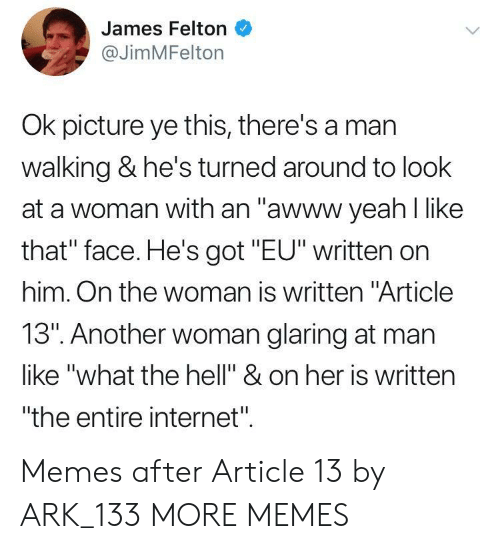 """that face: James Felton  @JimMFelton  Ok picture ye this, there's a mar  walking & he's turned around to look  at a woman with an """"awww yeah l like  that"""" face. He's got """"EU"""" written on  him. On the woman is written """"Article  13"""". Another woman glaring at man  like """"what the hell"""" & on her is written  """"the entire internet"""". Memes after Article 13 by ARK_133 MORE MEMES"""