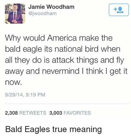America, Philadelphia Eagles, and True: Jamie Woodham  @jwoodham  1  Why would America make the  bald eagle its national bird when  all they do is attack things and fly  away and nevermind I think I get it  now.  9/29/14, 9:19 PM  2,308 RETWEETS 3,003 FAVORITES Bald Eagles true meaning