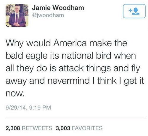 nevermind: Jamie Woodham  @jwoodham  Why would America make the  bald eagle its national bird when  all they do is attack things and fly  away and nevermind I think I get it  now.  9/29/14, 9:19 PM  2,308 RETWEETS 3,003 FAVORITES