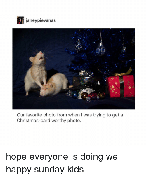 Christmas, Tumblr, and Happy: janeypievanas  Our favorite photo from when I was trying to get a  Christmas-card worthy photo. hope everyone is doing well happy sunday kids