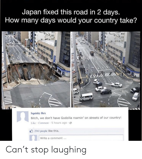 People Like: Japan fixed this road in 2 days.  How many days would your country take?  Squishy Rex  Bitch, we don't have Godzilla roamin' on streets of our country!  Like Comment 5 hours ago  2361 people like this.  Write a comment Can't stop laughing
