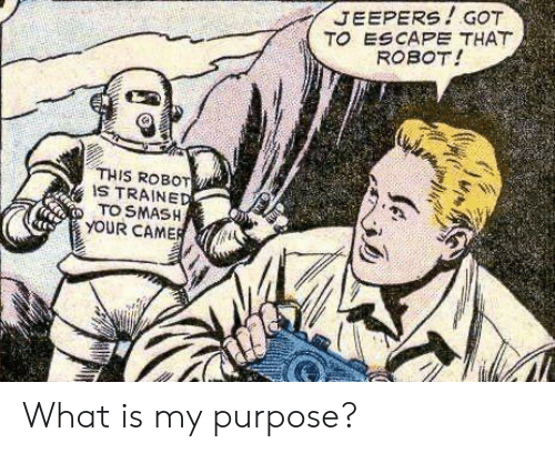 Smashing: JEEPERS!GOT  TO ESCAPE THAT  ROBOT!  THIS ROBOT  IS TRAINED  TO SMASH  YOUR CAMER What is my purpose?