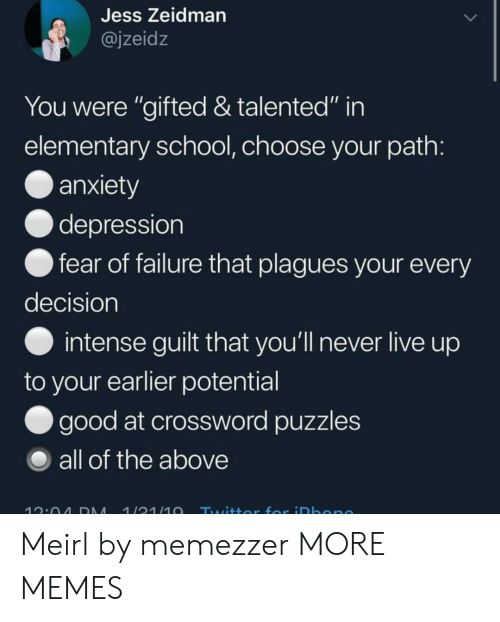 """Dank, Memes, and School: Jess Zeidman  @jzeidz  You were """"gifted & talented"""" in  elementary school, choose your path:  anxiety  depression  fear of failure that plagues your every  decision  intense guilt that you'll never live up  to your earlier potential  good at crossword puzzles  all of the above  1/31/10  12:04 DM  Twittor for iDbone Meirl by memezzer MORE MEMES"""
