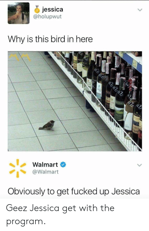 Walmart, Why, and Program: jessica  @holupwut  Why is this bird in here  ERMA  Walmart O  @Walmart  Obviously to get fucked up Jessica Geez Jessica get with the program.