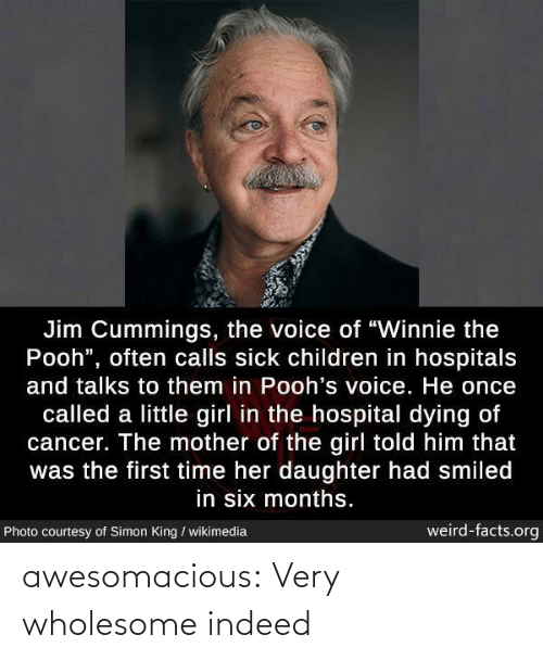 "pooh: Jim Cummings, the voice of ""Winnie the  Pooh"", often calls sick children in hospitals  and talks to them in Pooh's voice. He once  called a little girl in the hospital dying of  cancer. The mother of the girl told him that  was the first time her daughter had smiled  in six months.  weird-facts.org  Photo courtesy of Simon King / wikimedia awesomacious:  Very wholesome indeed"