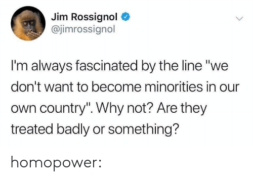 "Tumblr, Blog, and Media: Jim Rossignol  @jimrossignol  I'm always fascinated by the line ""we  don't want to become minorities in our  own country"". Why not? Are they  treated badly or something? homopower:"